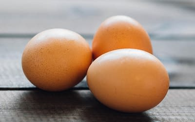 Agencies step up action on Spanish egg-linked salmonella outbreaks
